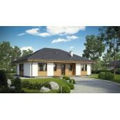 Одноэтажные дома (3)